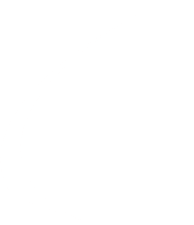 Perception Consult